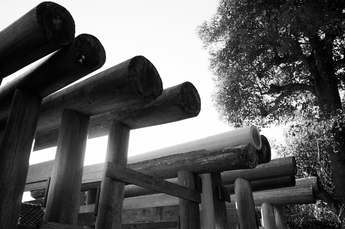tori in Kamakura