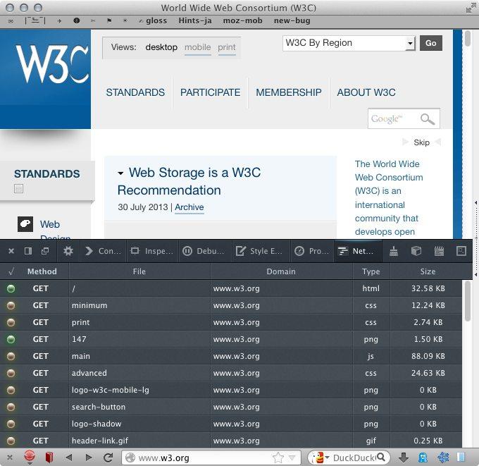 Firefox 23 Screenshot with developer tools